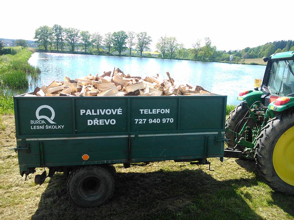 Štípané palivové dřevo