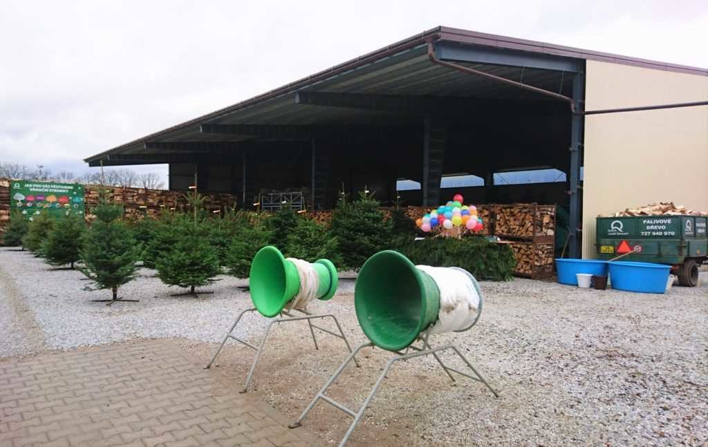 Prodej vánočních stromků a kaprů